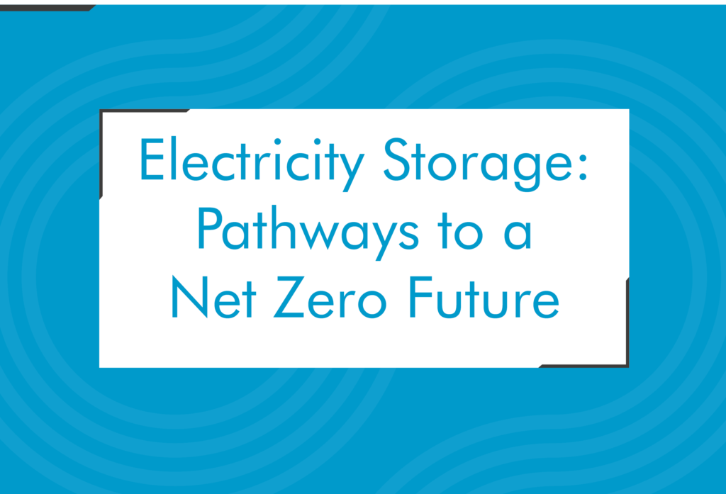 Electricity Storage: Pathways to a Net Zero Future