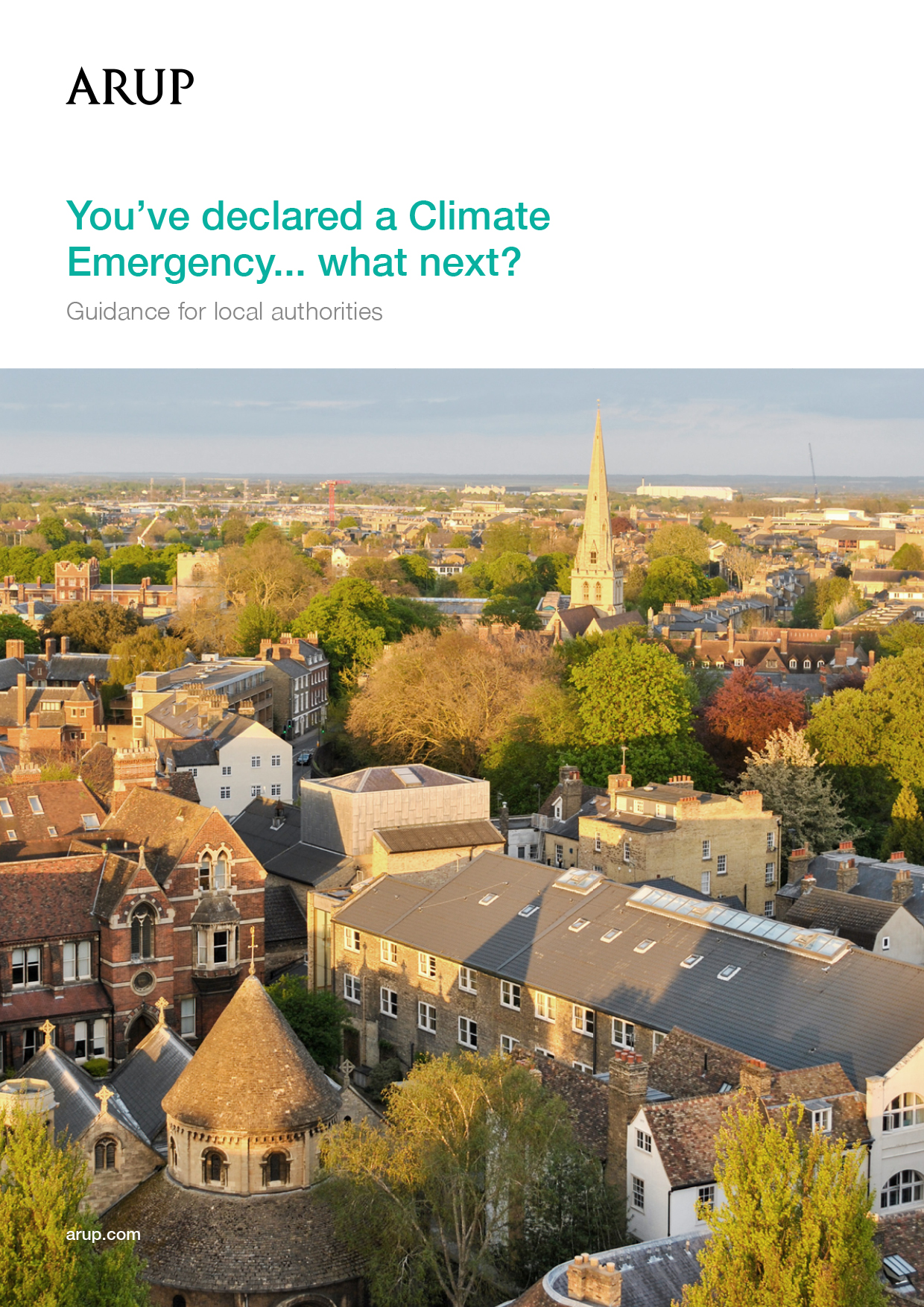 You've declared a Climate Emergency... what next?